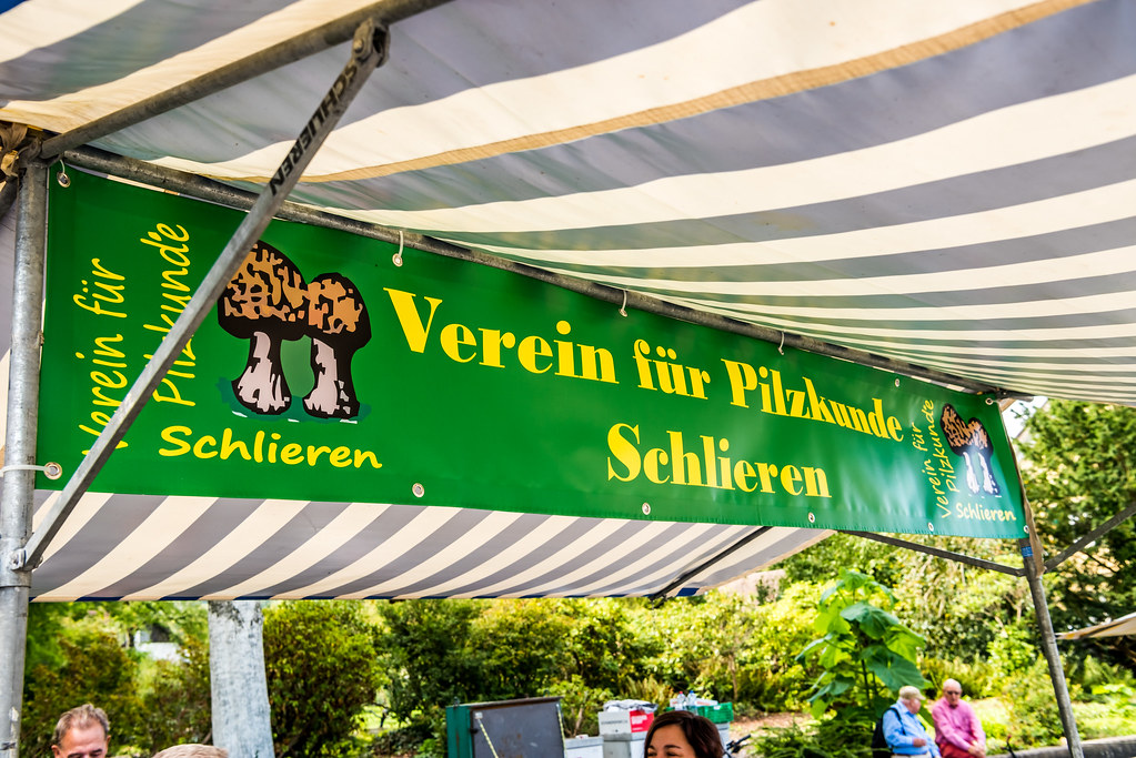 Herbstmarkt Schlieren, 5. September 2020