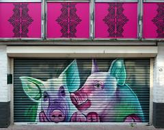 Arnhem: street art, pigs by Dopie dsk