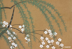 Blossoms from Momoyogusa–Flowers of a Hundred Generations (1909) by Kamisaka Sekka. Original from the The New York Public Library. Digitally enhanced by rawpixel.