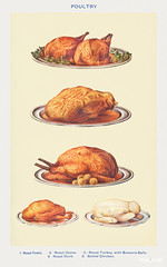 Poultry: Roast Fowls, Roast Goose, Roast Turkey with Savoury Balls, Roast Duck, and Boiled Chicken from Mrs. Beeton's Book of Household Management. Digitally enhanced from our own 1923 edition.