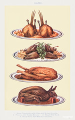 Game III: Roast Pheasants with Chips and Brown Crumbs, Plovers with Potato Straws, Roast Wild Duck, and Roast Hare with Red Currant Jelly from Mrs. Beeton's Book of Household Management. Digitally enhanced from our own 1923 edition.