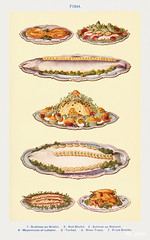 Fish IV: Scallops au Gratin, Red Mullet, Salmon au Naturel, Mayonnaise of Lobster, Turbot, River Trout, and Fried Smelts from Mrs. Beeton's Book of Household Management. Digitally enhanced from our own 1923 edition.