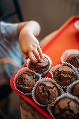 Young child picking up a delicious chocolate cupcake from a tray
