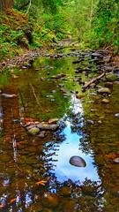 Aptos Creek
