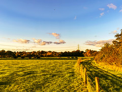 On the the way home -Swinfen and Packington, Lichfield District, England
