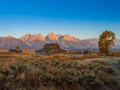 Wyoming Grand Teton National Park Autumn Colors Fall Foliage Fuji GFX100 Fine Art Landscape Nature Photography! Elliot McGucken 45EPIC Master Medium Format Photographer Fuji GFX 100 & Fujinon Fujifilm GF Lens!