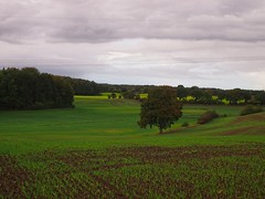 October landscape with autumn weather | October 10, 2020 | In the district of Plön - Schleswig-Holstein - Germany