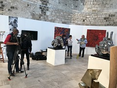 harada-artistes orleanais-9