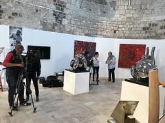 harada-artistes orleanais-10