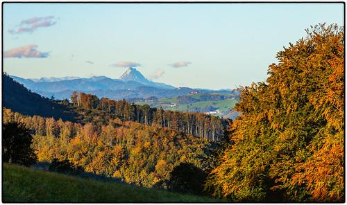 Herbst am Damberg