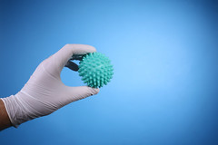 Hand with surgical latex gloves holding Coronavirus with fingers on blue background with copy space