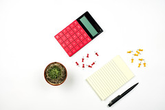 Accountant's working desktop with notepad, calculator and pot of cactus plant