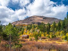 Hope Valley Cabin Alpine County High Sierra Autumn Colors Fall Foliage Fuji GFX100 Fine Art Landscape Nature Photography! California Aspens Brilliant Red Orange Yellow Autumn Leaves Eastern Sierra! Medium Format Fuji GFX 100 & Fujinon Fujifilm GF Lens!