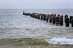 Brighton Beach ocean view
