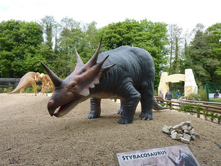 Photo 4 of 10 in the Drayton Manor gallery