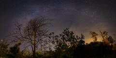 My First Milky Way Pano