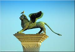 Vendedig 2020 - Die Markussäule auf der Piazzetta San Marco in Venedig