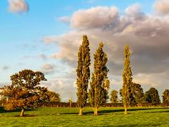 Swinfen and Packington, Lichfield District, England