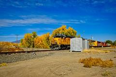 10-14-20-train-005flickr