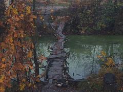 Bridge of Horror