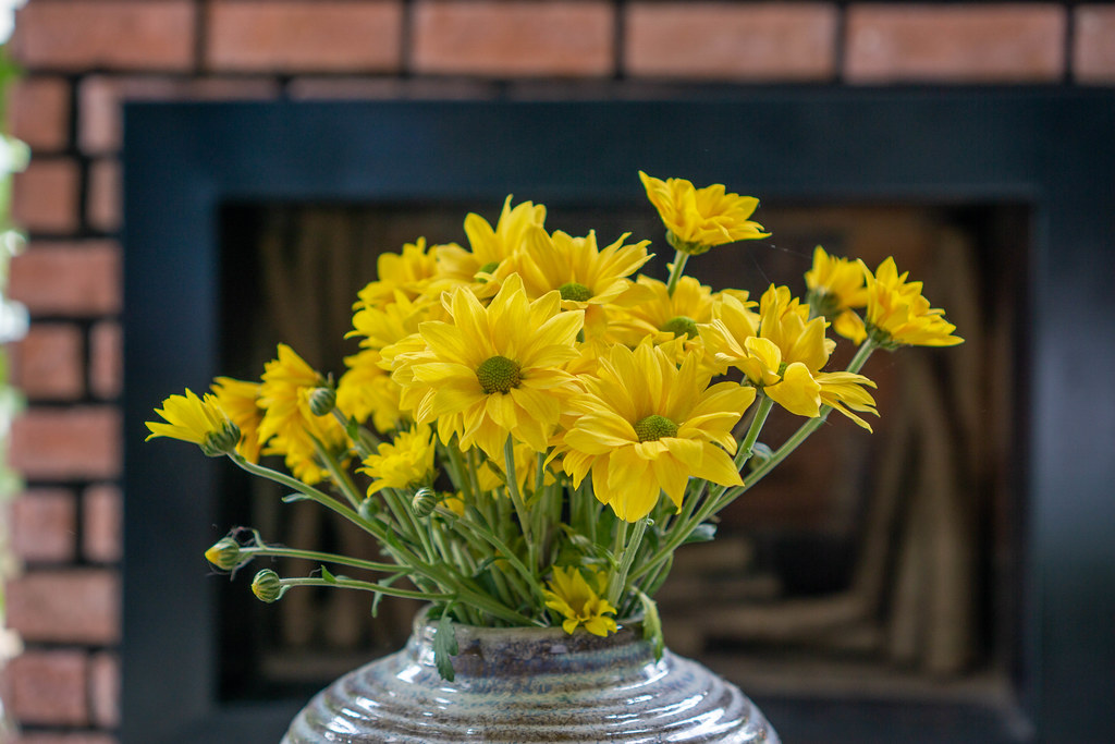 Yellow Daisy Flowers in a Plant Pot with a Tiled Stove in the Background