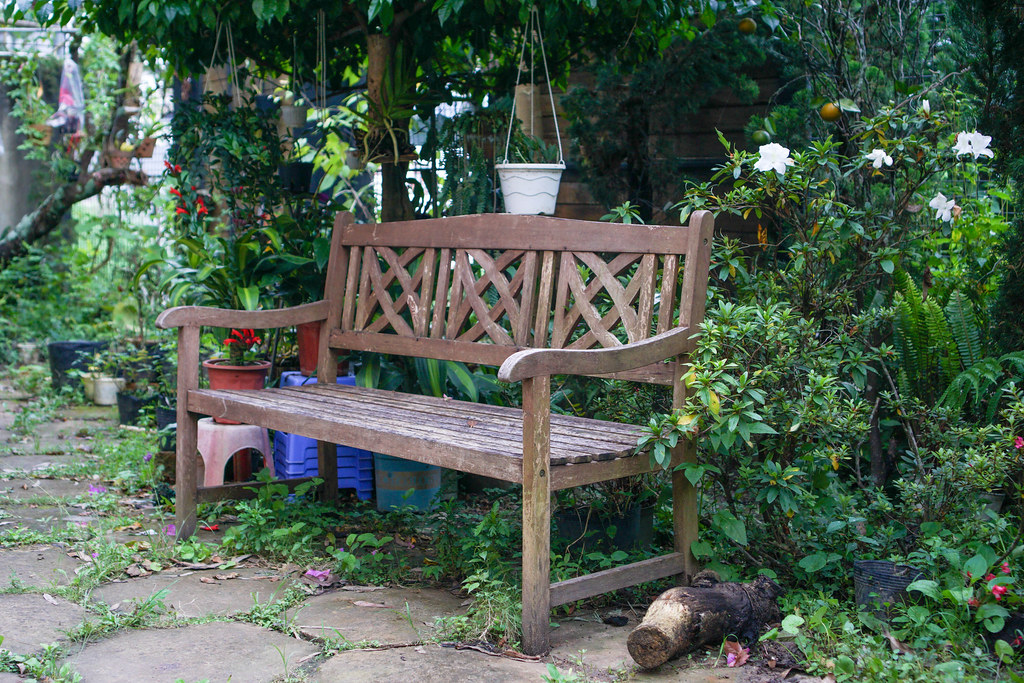Wooden Bench in a Garden with Flowers and Plants around it