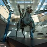 Statue équestre de Marc Aurèle, Musées du Capitole, Rome, 2020 - https://www.flickr.com/people/29248605@N07/