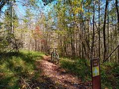 Tilly Trail - a.k.a. Inner Loop