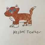 Kestrelfeather