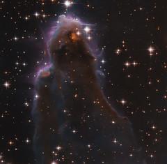Hubble Snaps a Special Stellar Nursery