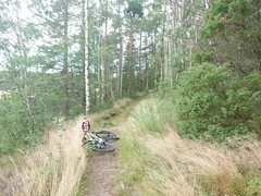 MTB ride at August 26, 2020