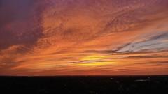 Orange Florida Sunset