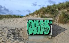 Julianadorp beach: dune graffiti