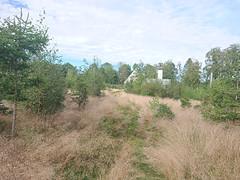 Hulvei, Prestegårdsskogen, Askim, Indre Østfold, Viken, Norway