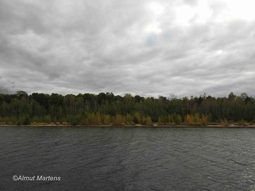 Blick vom Zwenkauer See zum Eichholz