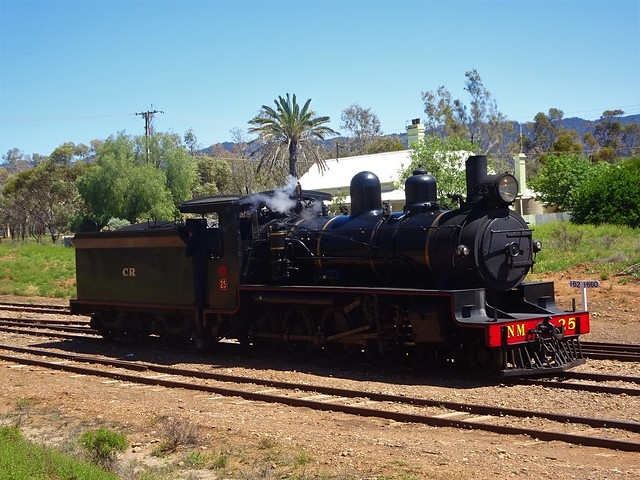 Photo:Quorn. Old steam engine used on the Pichi Richi railway steaming into the railway station. By denisbin