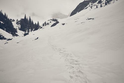 Foot Steps in Snow