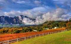 2015-05 May 14 South Africa Johanesburg
