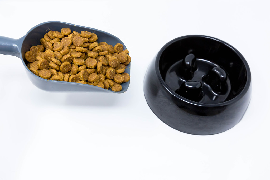 Dog food in a scoop and black dog bowl. Close up on white background