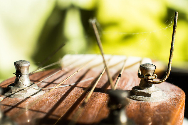 Photo:String on a dusty old guitar By Maria Eklind