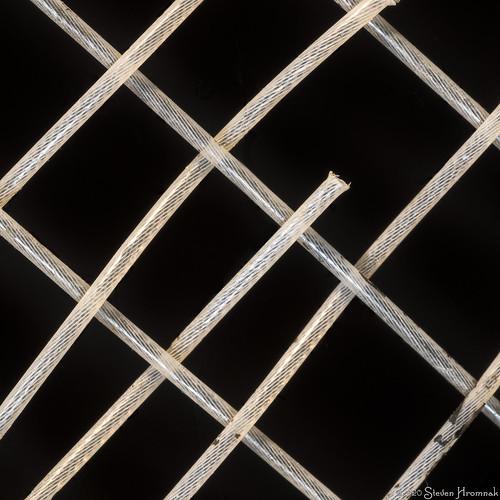 Tholian Web