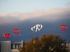 Make hearts rise | October 17, 2020 | Fehmarn Island - Südstrand - Schleswig-Holstein - Germany