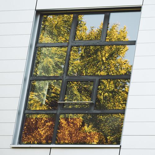 window no.9 / Bad Gleichenberg