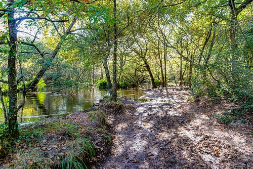 07-Ruisseau du moulin de Lugos