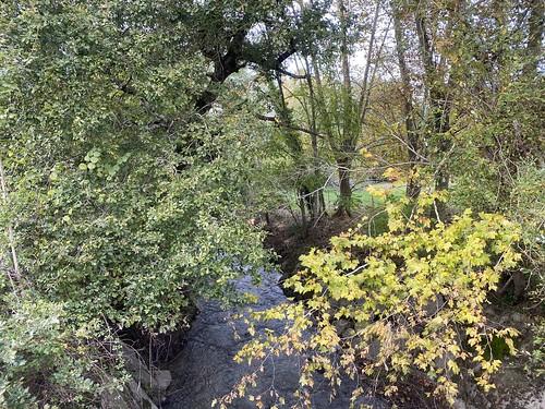 Cagnotte, Landes: le Bassecq