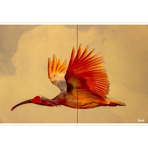 Vogeldetail