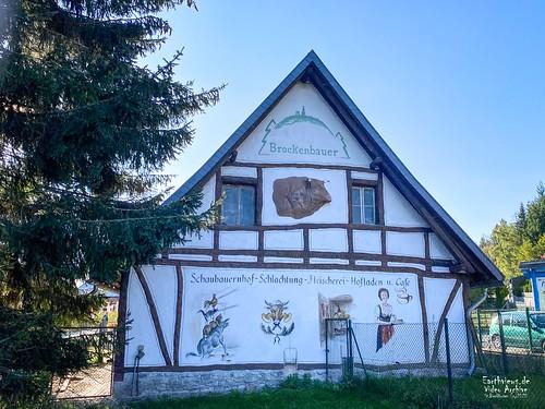 Brockenbauer in Tanne