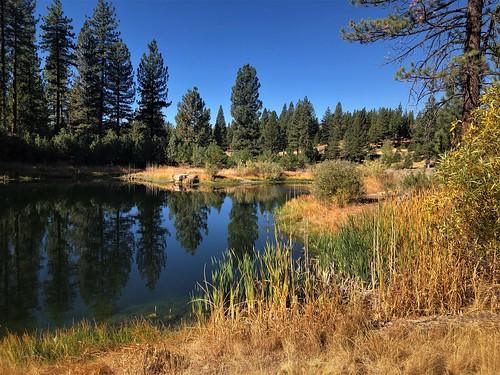 Autumn in the High Sierras