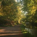 Sun on the Canal