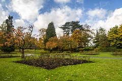 Autumn in Aberdare Park 20.10.20